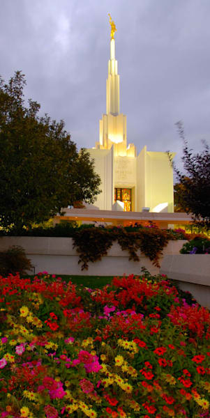 Denver Temple - Panoramic Red Flowers