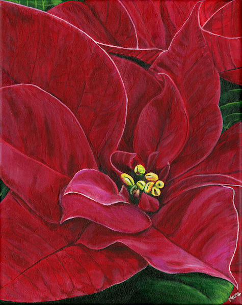 Fine art original painting of Poinsettia Passion by artist Mary Anne Hjelmfelt