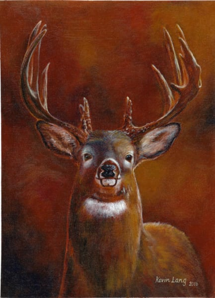 Stacked Rack Whitetail Art | Kevin Lang Fine Art