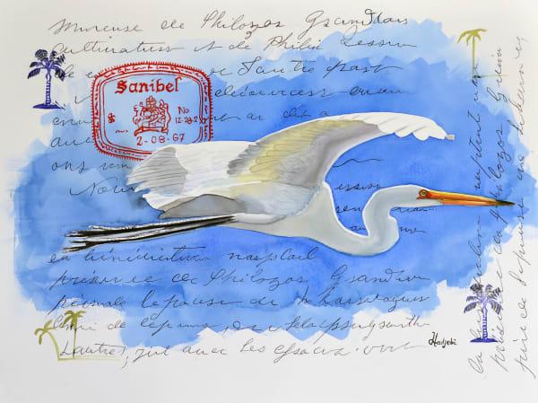 Sanibel Great White Egret in Flight - Wings