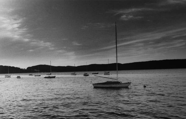 Lauree Feldman Moored Boats