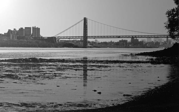 Lauree Feldman George Washington Bridge