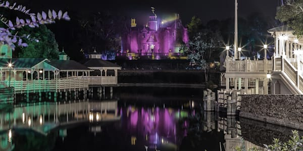 Haunted Mansion Reflection 1 - MNSSHP Photos | William Drew