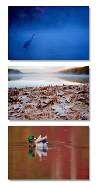 Walden Pond 3 Photography Art | Tim Laman