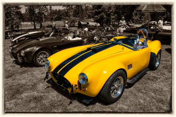 Historic Cobra, Anyone?