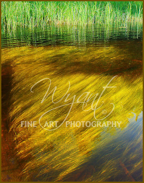 Abstract Reflection:  Shop Fine Art Photography | Jim Wyant, Master Craftsman (317)663-4798