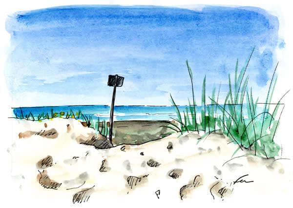 Dunes at IOP
