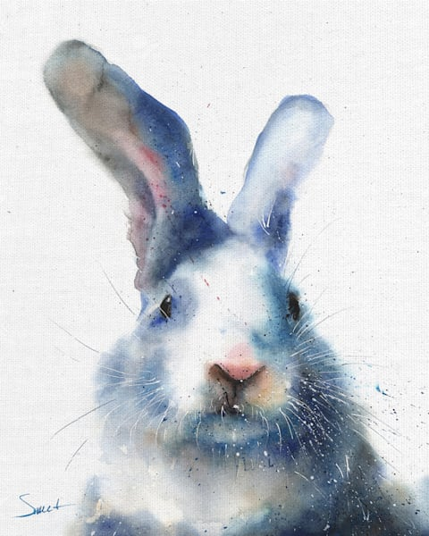 White Rabbit by artist Eric Sweet Wrapped Canvas Art Print