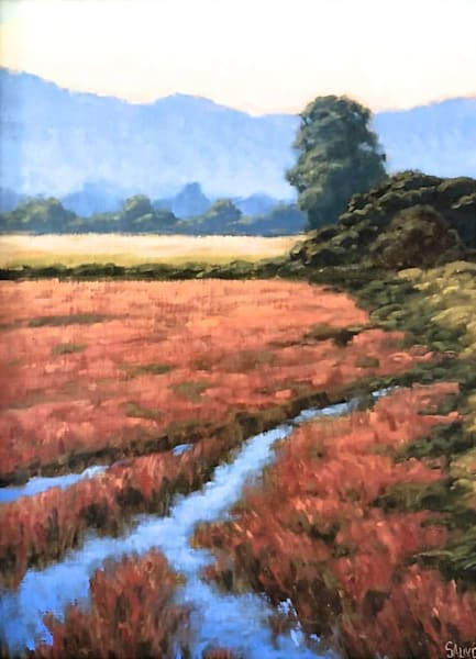 Morning Light, Creek And Meadow Art | Terry Sauve Fine Art