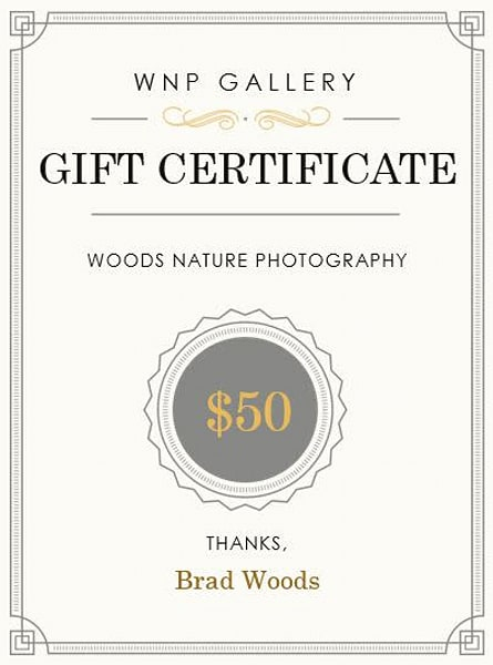 $50 Gift Card | Woods Nature Photography