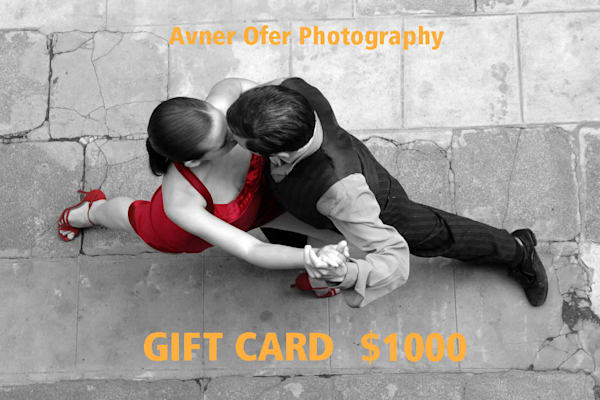 $1000 Gift Card | Avner Ofer Photography