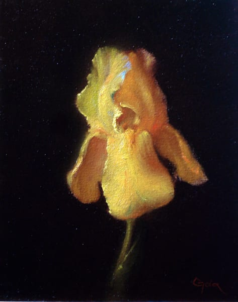 Southland Iris Art | Cristina Goia