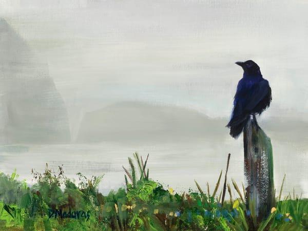 Raven in the Mist California Coastline