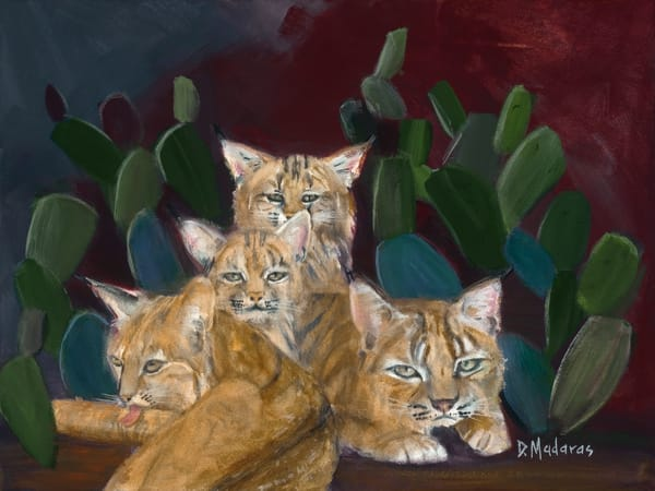 Wildcats in the Cactus Lair by Diana Madaras