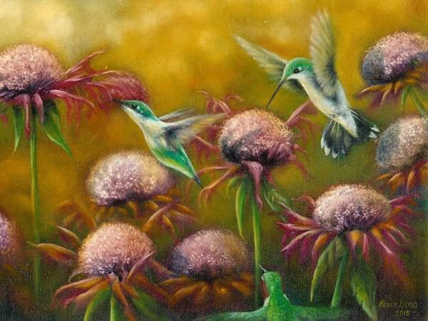 Hummingbirds seek a drink from coneflowers