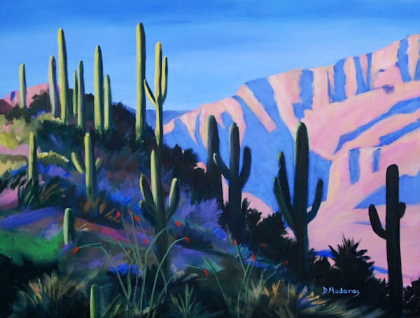 Saguaro Ridge by Diana Madaras