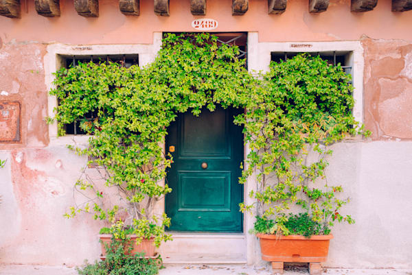 2489 Trapolino Street Venice | Kirby Trapolino Fine Art Photography
