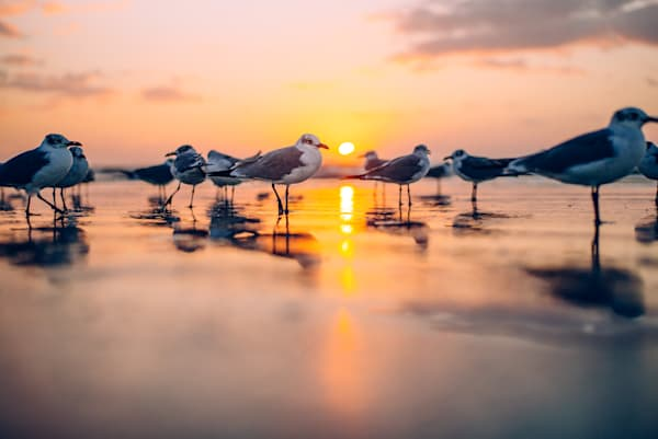 Dawning Divided   Kirby Trapolino Fine Art Photography