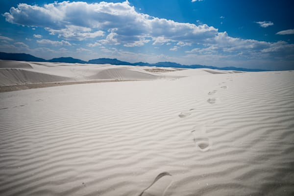 White Sands Wonders | Kirby Trapolino Fine Art Photography