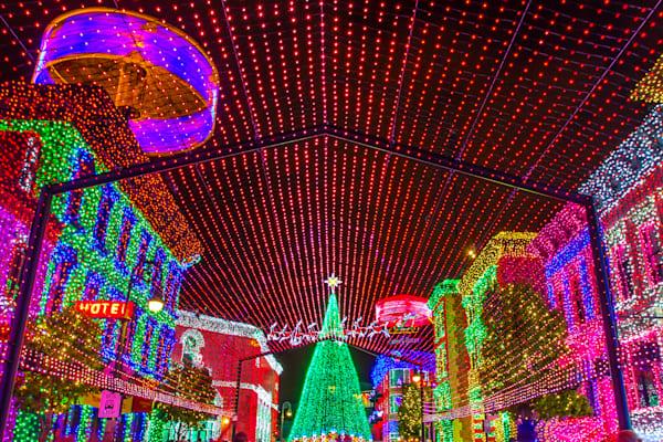 Osborne Family Lights - Disney Christmas Photos