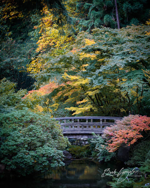 Bridge in Autumn Fine Art Photo of Portland Japanese Gardens for sale by Barb Gonzalez Photography