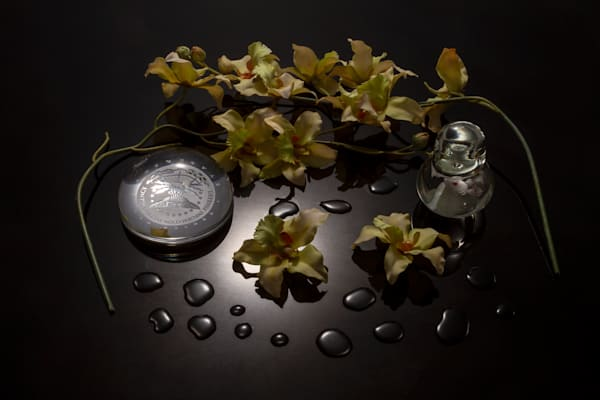Fine Art Photograph of Drops and Flowers on Black Plexi by Michael Pucciarelli