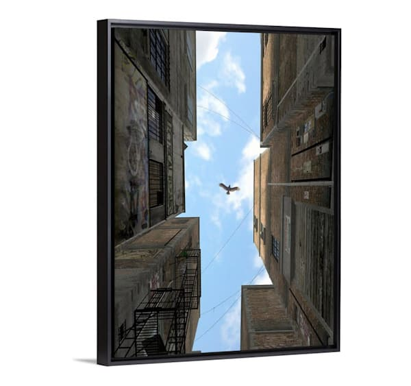 Cynthia Decker | Afternoon Alley gallery canvas