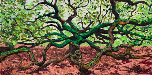 Angel Oak Painting