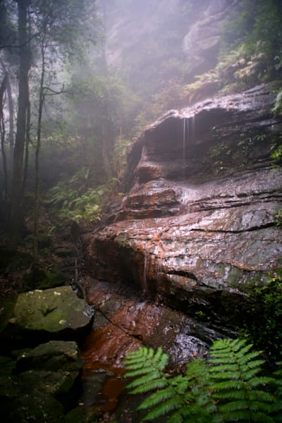 Witches Shroud - Katoomba Blue Mountains NSW Australia | Waterfall