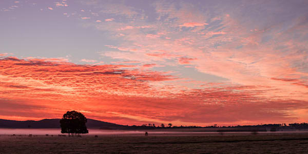 Sunrise Sky Show - Hunter Valley NSW Australia | Sunrise