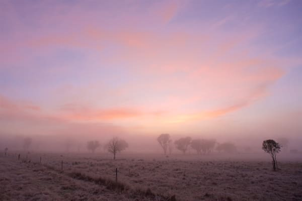 Misty Morning - Armidale NSW Australia - Sunrise