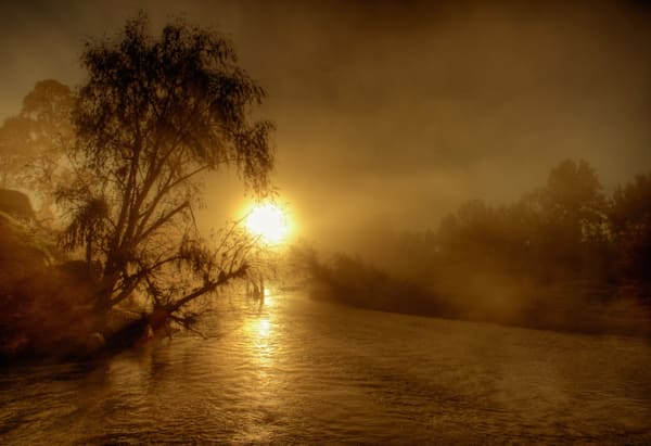 Melville Misty Morning - Maitland Hunter River Melville Ford Bridge NSW Australia | Limited Edition