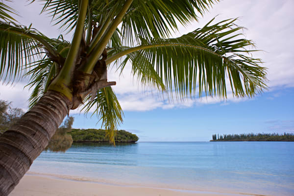 Island Dream - Isle Of Pines New Caledonia South Pacific