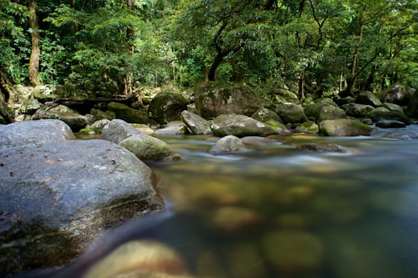 Gorge Flow - Mossman Gorge Daintree Rainforest Qld Australia