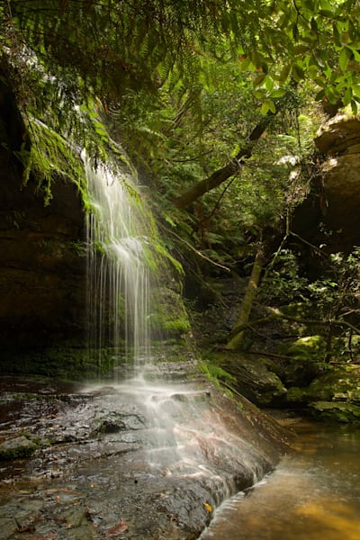 Green Veil - Leura Blue Mountains National Park NSW Australia | Watefall