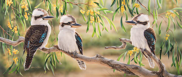Golden Life | Kookaburras in golden wattle - Natalie Jane Parker