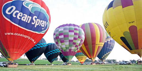 Bevy Of Balloons - Pokolbin Hunter Valley Wine Country NSW Australia | Hot Air Balloon