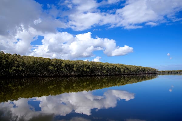 Ash Island - Newcastle NSW Australia | Reflection