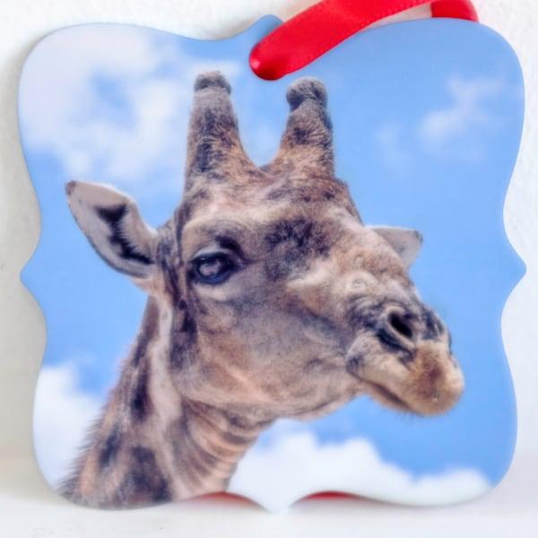 Giraffe close up head metal ornament