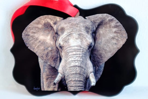 African elephant's face metal ornament