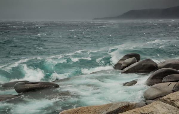 Cold Wind and Rain