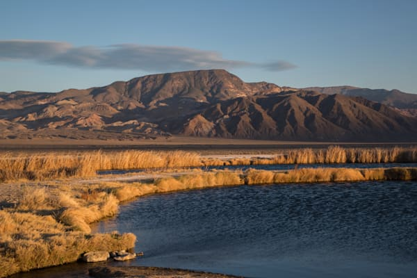 Fish Lake Valley Golden Hour
