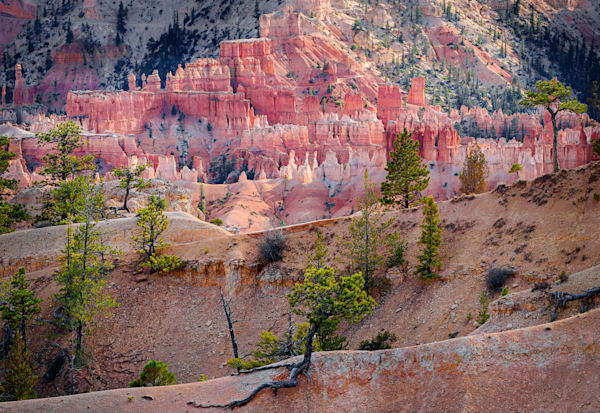 Bryce Canyon Layers