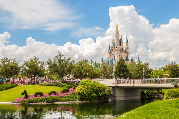 Magic Kingdom Wall Mural | William Drew Photography