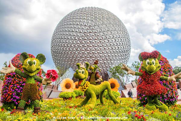 Epcot Flower and Garden 5 - Disney Wall Murals | William Drew