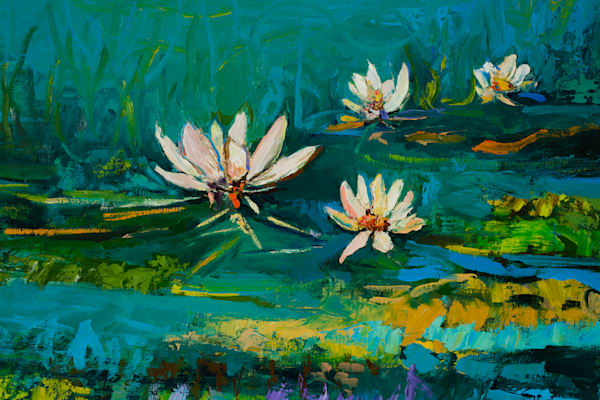White Water Lily Prints