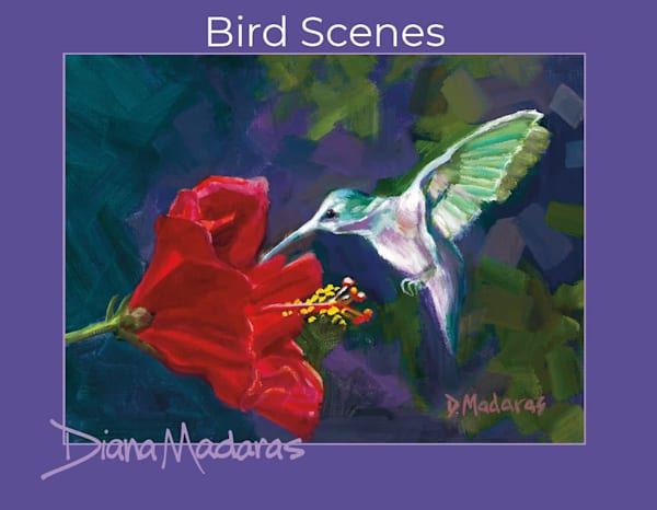 Bird Scenes Box Notecards