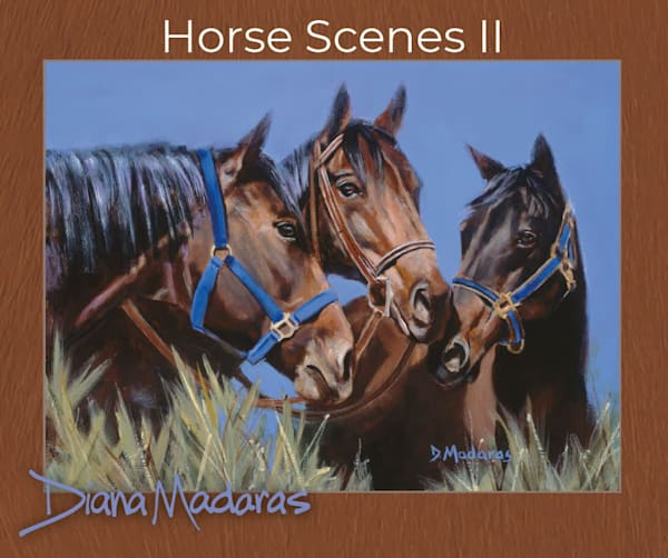 Horse Scenes Box of 18 Cards