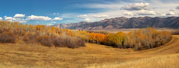 Hillside Fall, Freedom, Id Photography Art | Mallory Winters Photography
