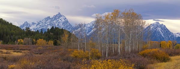 Last Colors, Teton National Park